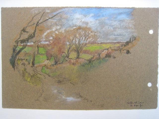 Germansweek landscapes, Metherell Lane