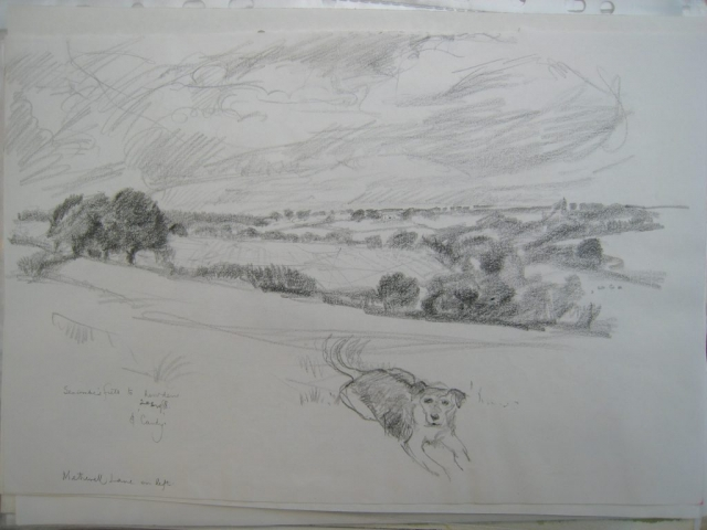 Germansweek landscapes, Seccombe's field to Howden with Candy, Metherell Lane on left