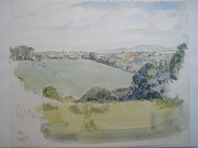 Germansweek landscapes, Eworthy area, looking towards Blagrove