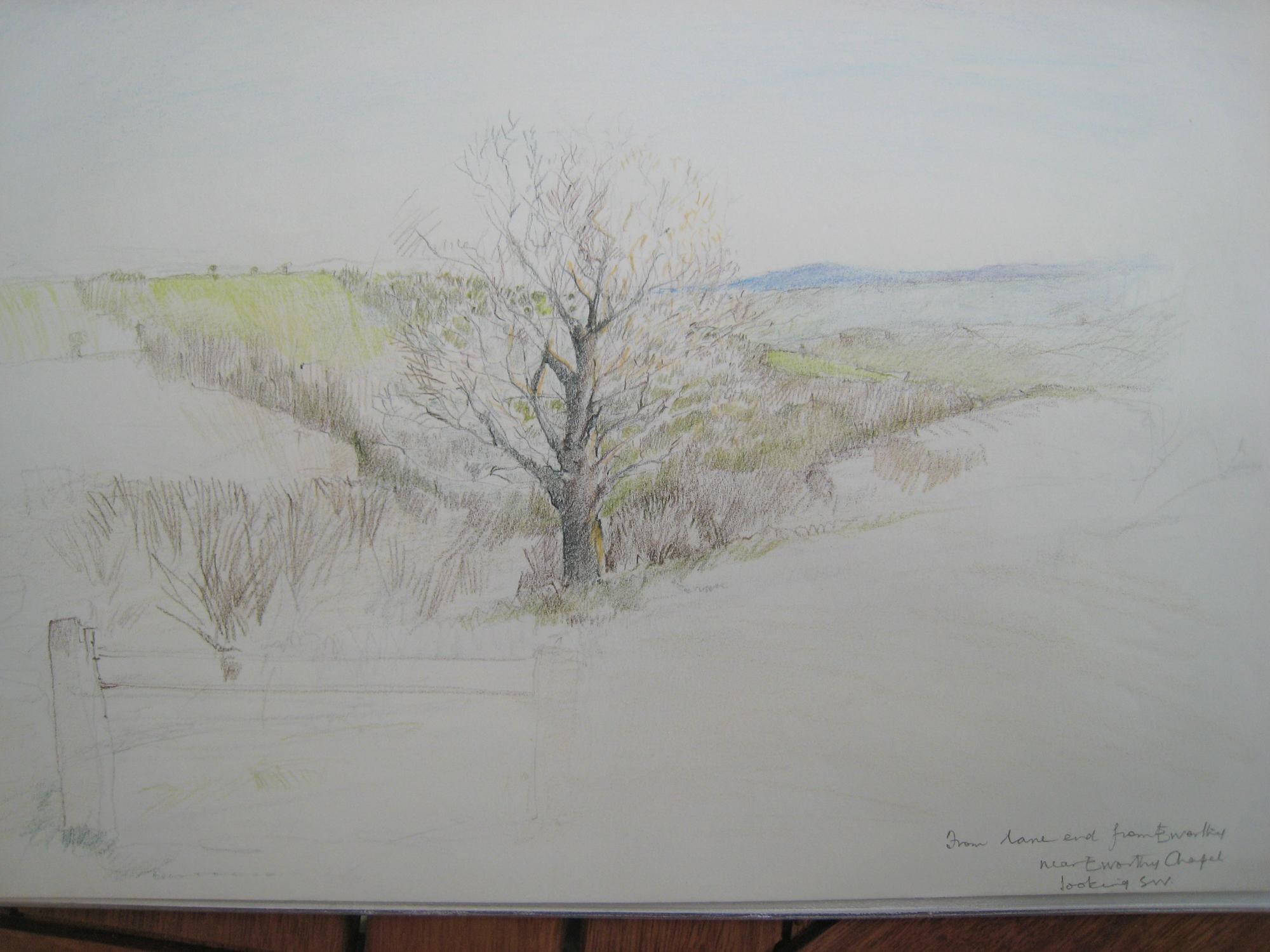Germansweek landscapes, view SW towards Dartmoor from near Eworthy Chapel