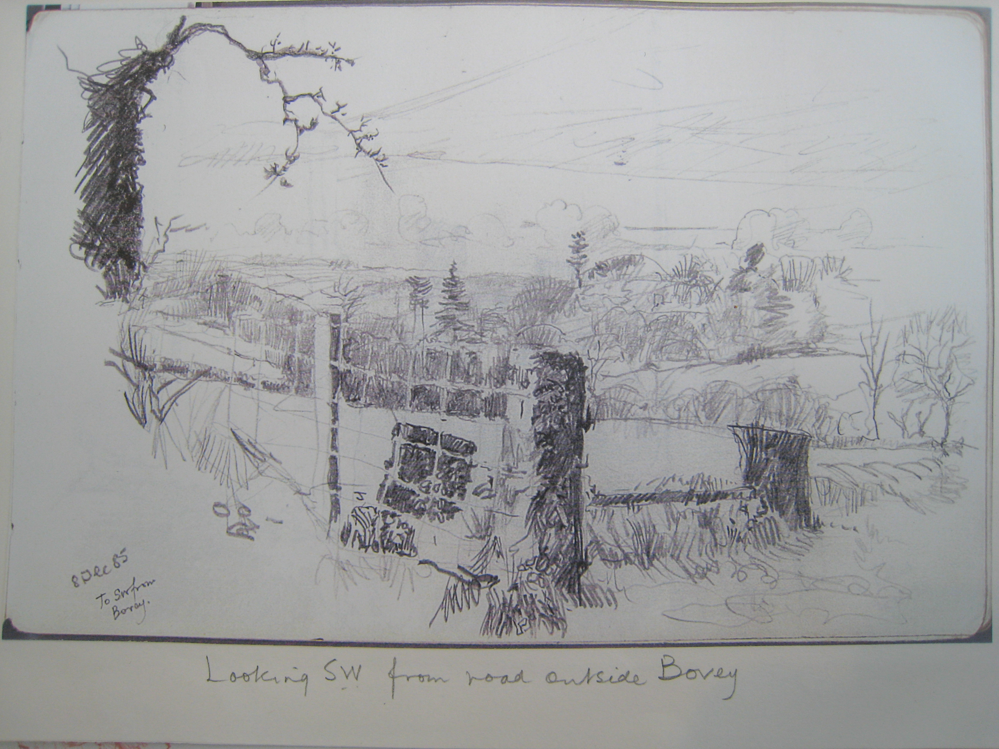 Germansweek lansdcape, view looking SW from road outside Bovey