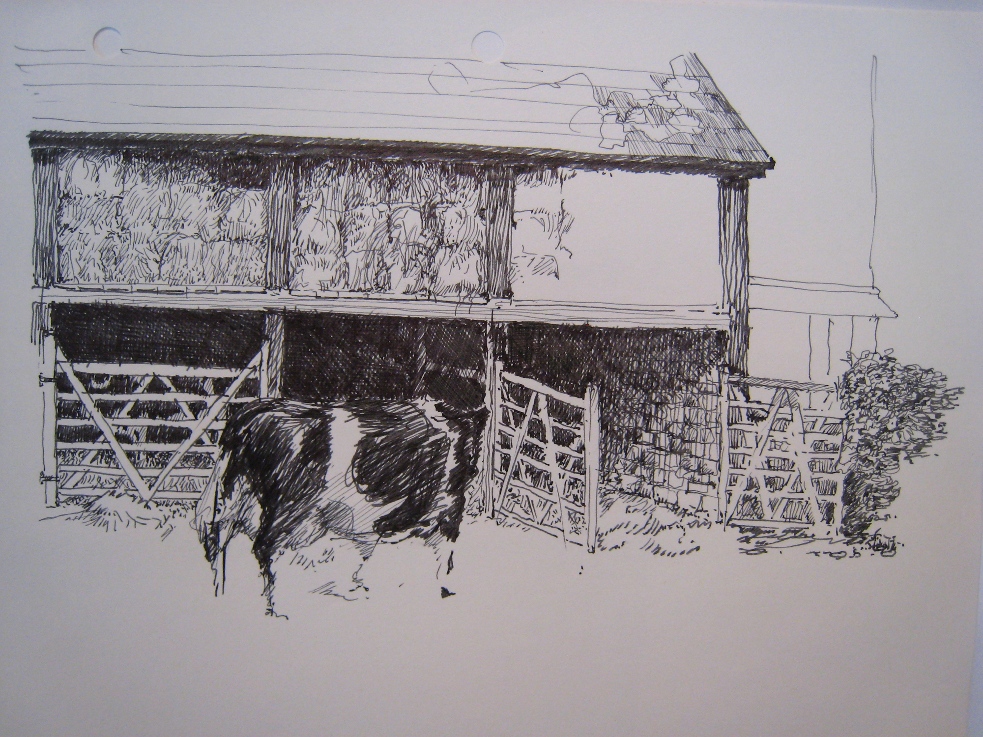 NT The Linhay, Beare Farm, Killerton Estate - with cows, detail